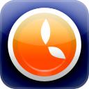 Borange Icon